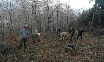 Kiseljak: Šumari u borbi protiv požara