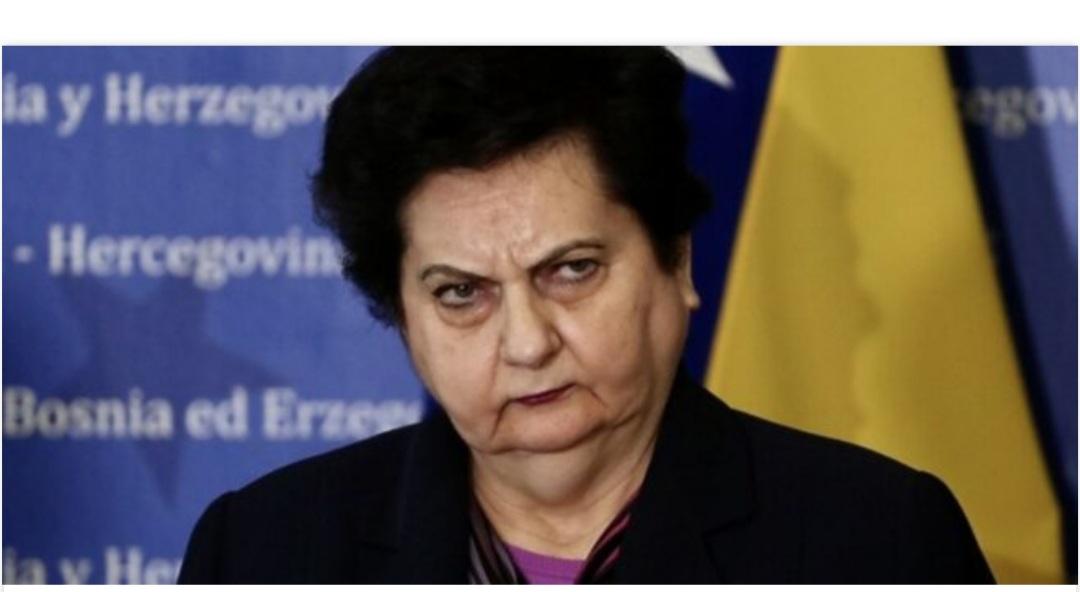 Majkić nakon sjednice povjerenstva državnog parlamenta: EU želi parkirati migrante u BiH