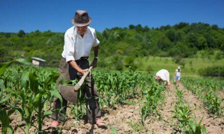 Općina Kiseljak: Poticaj razvoju poljoprivrede
