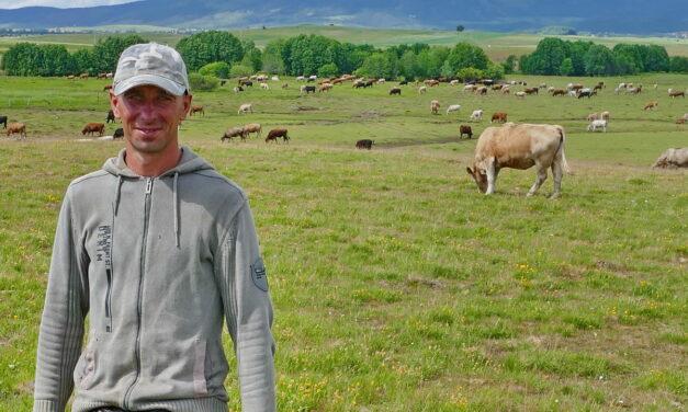 Čuva 500 krava i ponosi se time, ne želi više lomiti leđa na građevini