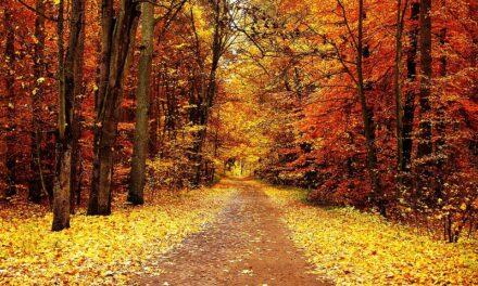 Danas je prvi dan jeseni, evo kakvo nas vrijeme očekuje