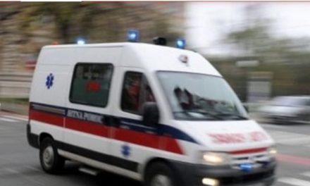 Velika tragedija: Stršljen ubio mladog oca, u trenutku uboda bio s djecom u šumi
